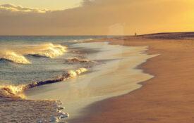 Playa Matorral 2