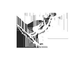wellenreiterin-Icon 250x200