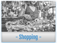 shopping-sw